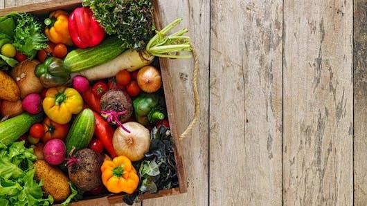 Fibromyalgie: comment l'alimentation affecte les symptômes
