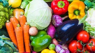 Quels bénéfices d'une alimentation riche en produits bio?