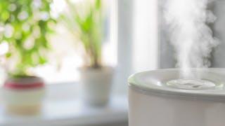 3 choses à savoir sur les humidificateurs