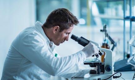 Mobilisons-nous au profit de la recherche sur les maladies rénales
