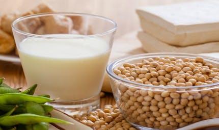 Le soja augmente-t-il ou prévient-il le risque de cancer du sein?