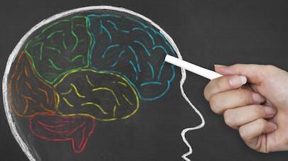 Une simple astuce pour améliorer les capacités de la mémoire
