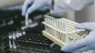 La protamine, un nouveau médicament contre le développement tumoral?