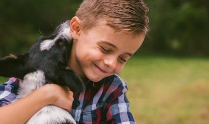Allergies, obésité: comment le chien protège votre enfant