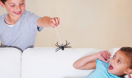 Peur des araignées: comment en venir à bout