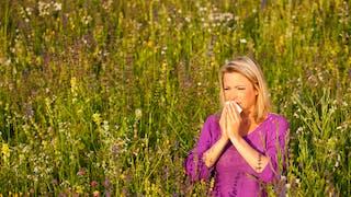 Allergique, et plus sensible aux infections virales: la double peine