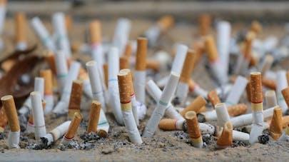 Cigarettes: à quoi sert le paquet neutre?