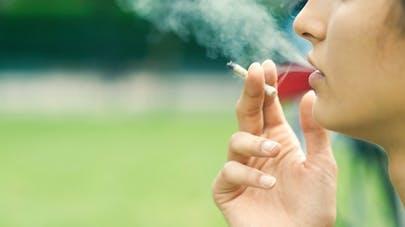 Cannabis: une consommation précoce influence les résultats scolaires