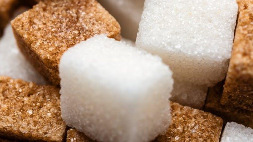 """Les 4 étapes pour commencer un défi """"sans sucre"""""""