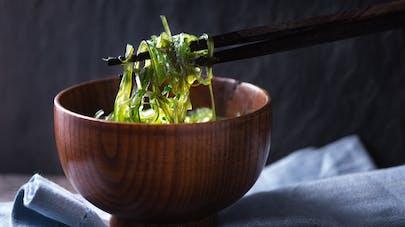 Sept algues comestibles et leurs bienfaits