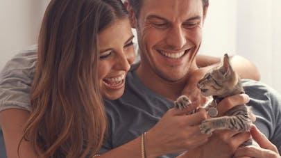 Pour être heureux en couple, regardez des vidéos de bébés animaux