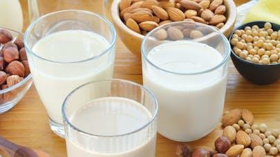 Lait de riz, lait de soja… quelle boisson végétale choisir?