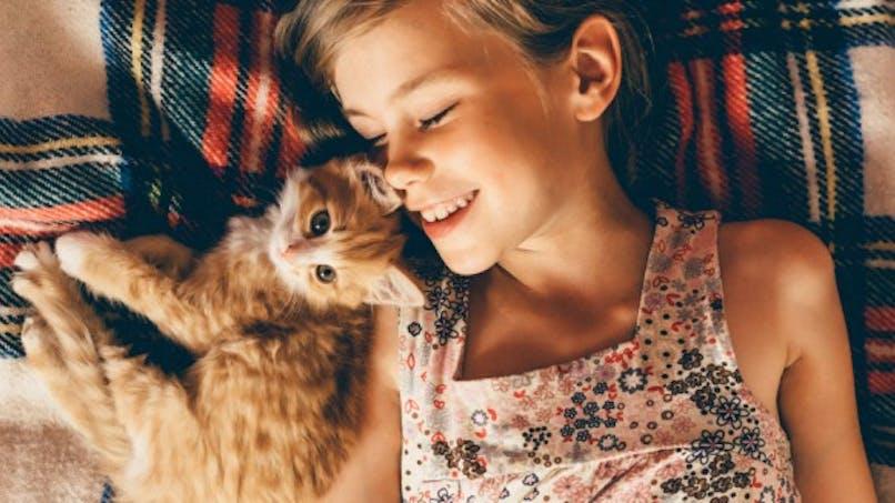 Journée internationale du chat: les solutions lorsqu'on est allergique