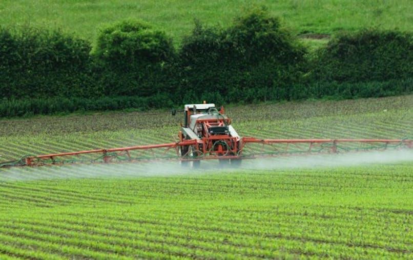 Glyphosate: la France s'opposera à sa ré-autorisation