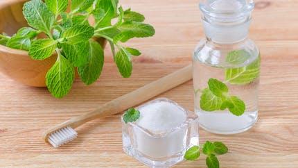 Les plantes qui soignent aphte, mauvaise haleine ou petit mal de dent
