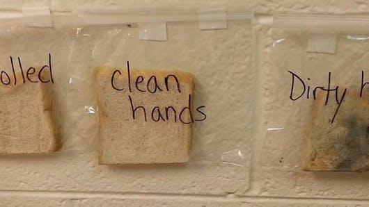 Une enseignante montre l'importance de se laver les mains avec une méthode originale