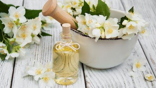 Le jasmin, une plante qui facilite l'endormissement