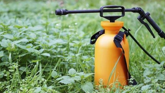 Glyphosate: une interdiction le plus rapidement possible demandée