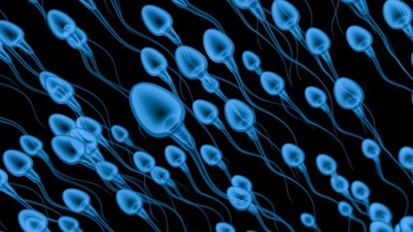 Les particules fines, néfastes pour le sperme