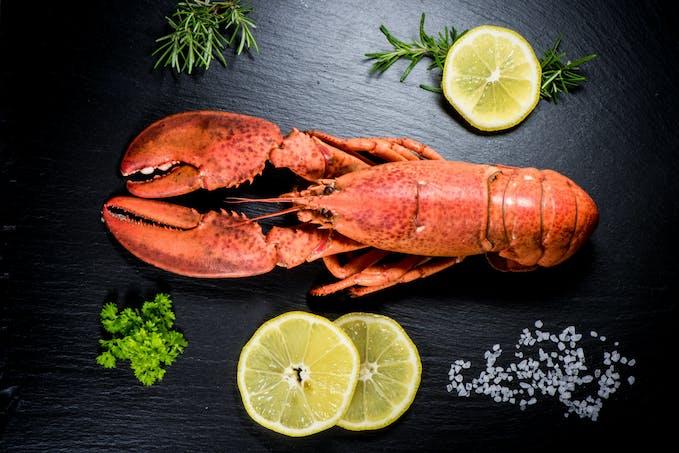 Le homard, le plus fin des crustacés