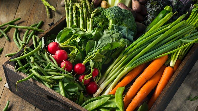 Manger des légumes de toutes les couleurs