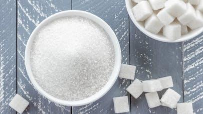 sucre en poudre et en morceaux