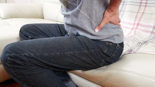 Le rein, un organe qui se fait trop souvent oublier