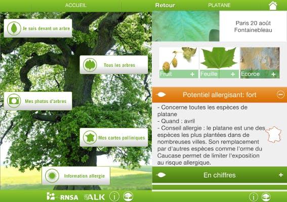Reconnaître les arbres allergisants grâce à une appli