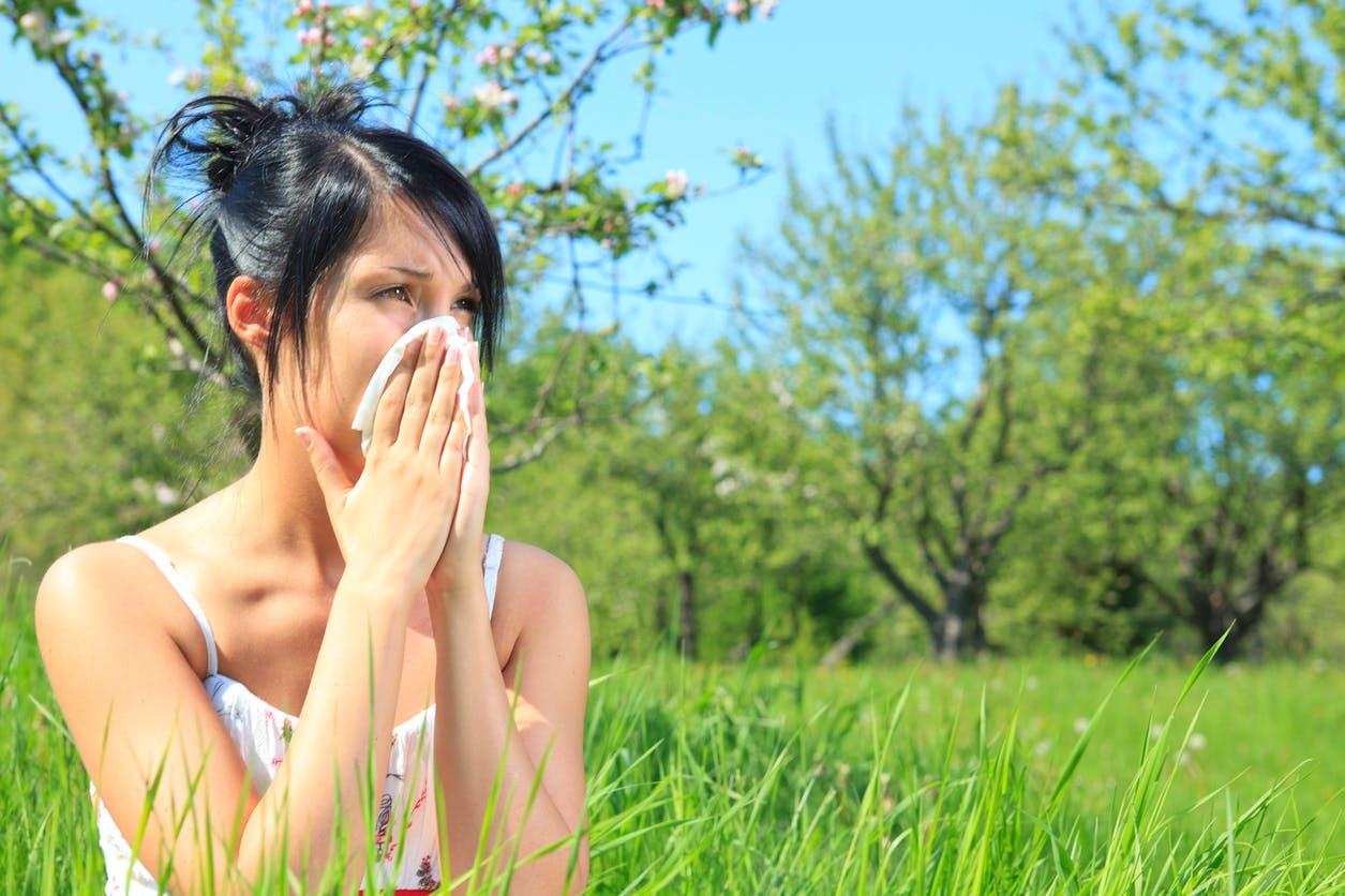 10 antihistaminiques et anti-inflammatoires contre l ...