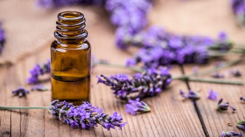 Deux huiles essentielles suspectées d'agir comme des perturbateurs endocriniens