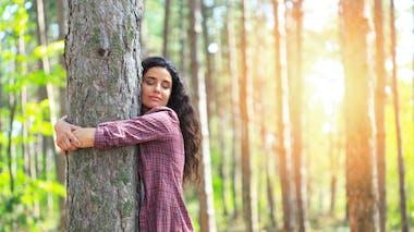 Sylvothérapie : comment les arbres nous aident à aller mieux