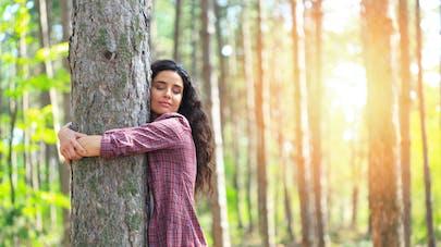 Lutter contre le stress avec les arbres