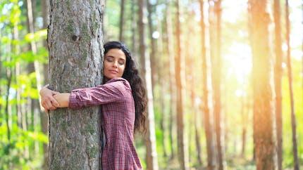 Sylvothérapie : comment les arbres nous aident à aller mieux ?