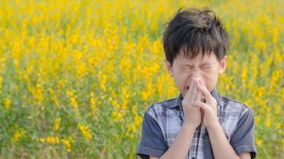La moitié des allergies respiratoires sont dues aux pollens