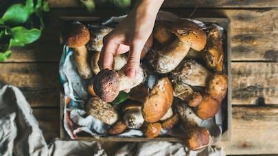 3 bonnes raisons de manger des champignons