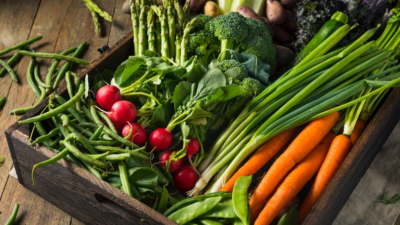 Place aux légumes primeurs tout frais, tout bons!