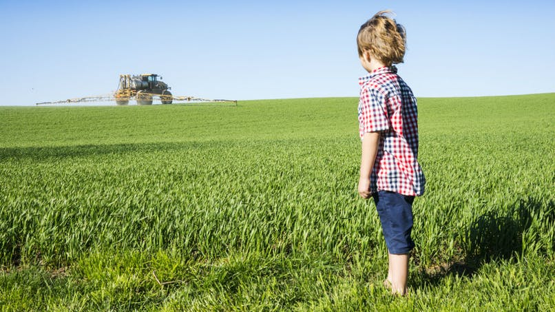 Pesticides: 80 substances actives analysées en France pendant un an