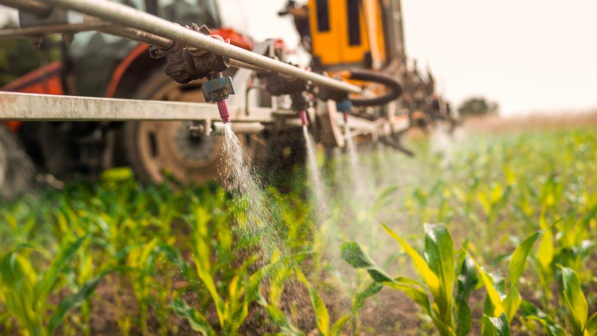 Vers un fond d'indemnisation des victimes de pesticides?