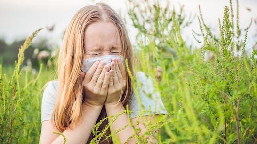 Allergies: aidez les chercheurs à mieux repérer l'ambroisie