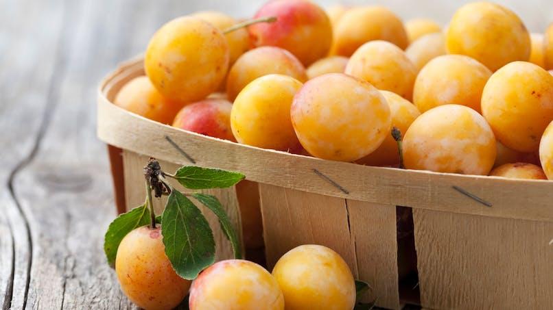Six bonnes raisons de manger des mirabelles