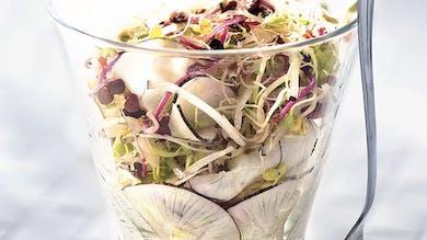 Salade de radis noir et graines germées