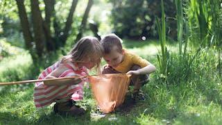 Comment stimuler la curiosité chez l'enfant