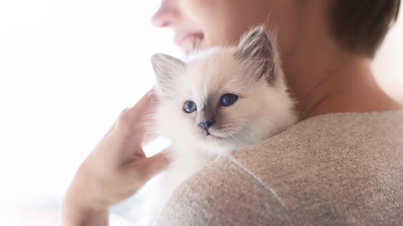 Cancer du sein : une femme assure avoir été sauvée par son chat