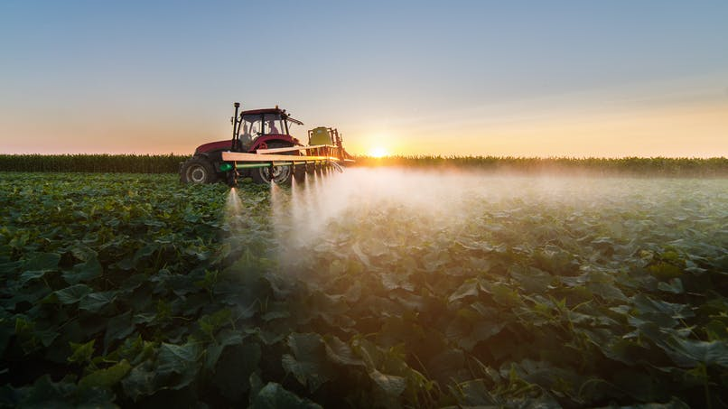 Pesticides : quels départements en utilisent le plus ?