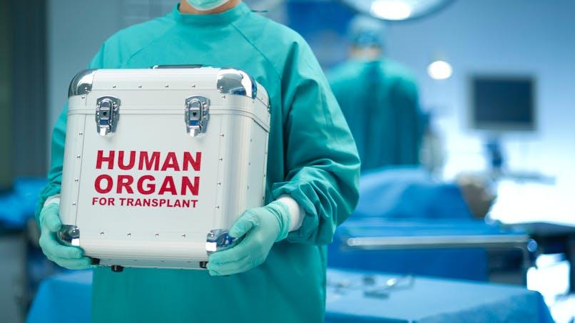 Greffes: «30 % des organes sont refusés pour des raisons médicales»
