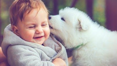 L'exposition aux animaux domestiques durant l'enfance réduit le risque d'allergies