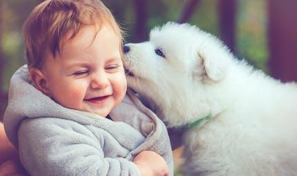 Allergies : être exposé jeune à plusieurs animaux de compagnie réduirait le risque