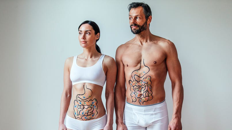 Le microbiote intestinal pour prédire l'âge biologique d'une personne