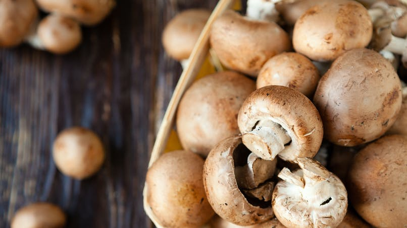 Les champignons, un aliment équilibré ?