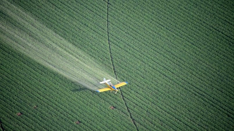 Pesticides: l'indemnisation des victimes encore repoussée